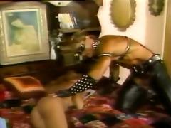 francois papillon - sex change cuties (1987)