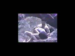 vintage 1994 - beach blow job voyeur