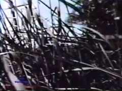 european peepshow loops 161 1970s - scene 3