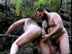 bearboxxx: classic bear